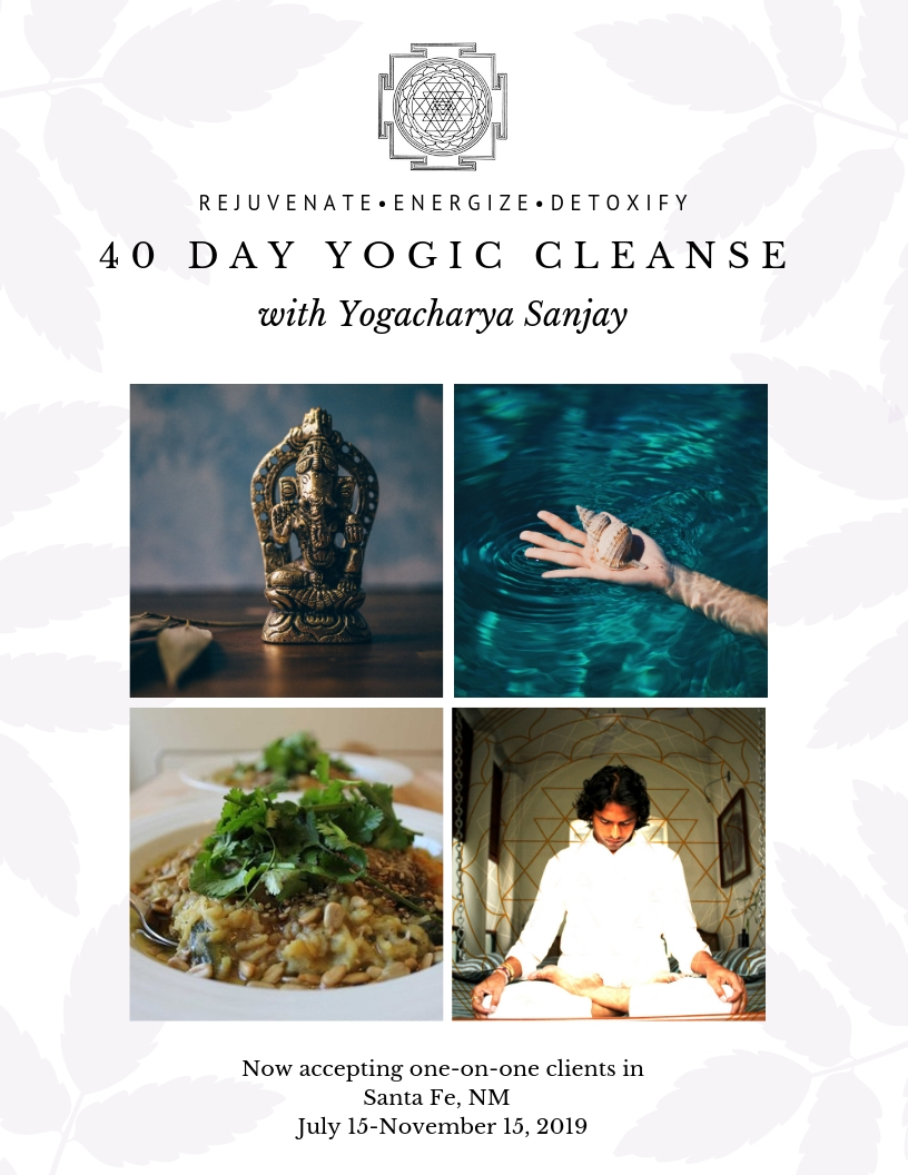 40 Day Yogic Cleanse with Yogacharya Sanjay